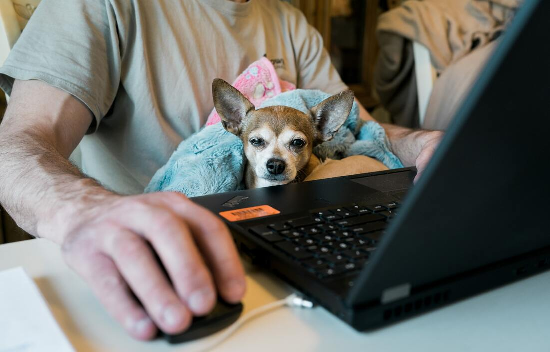 Your Business Needs a Work From Home Policy Yesterday